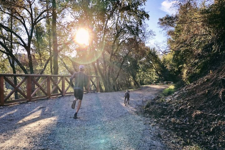runner and dog running on a trail